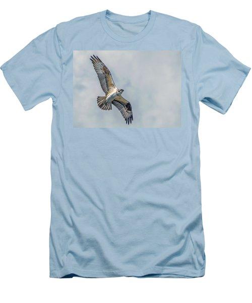 Osprey In Flight Men's T-Shirt (Athletic Fit)