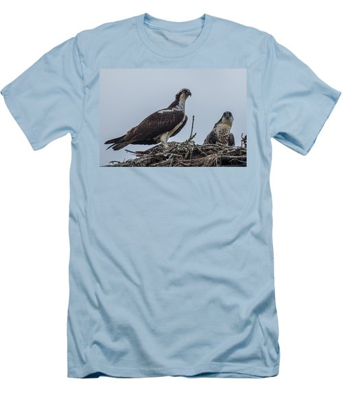 Osprey On A Nest Men's T-Shirt (Slim Fit) by Paul Freidlund