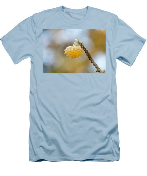 Paperbush Flower Men's T-Shirt (Athletic Fit)