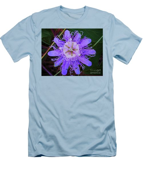 Passion Flower Bloom Men's T-Shirt (Athletic Fit)