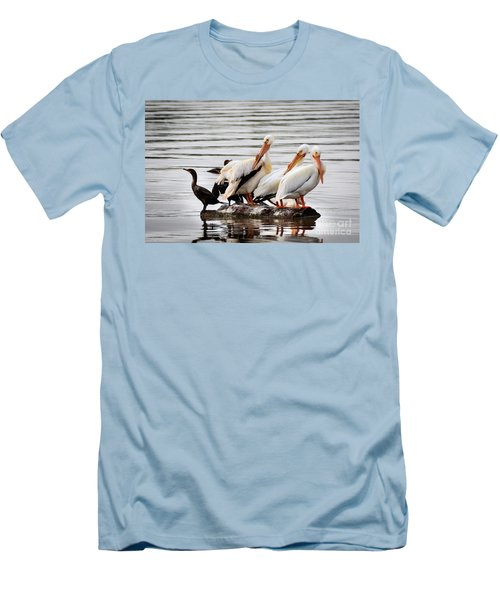 Pelicans And Cormorants Men's T-Shirt (Athletic Fit)