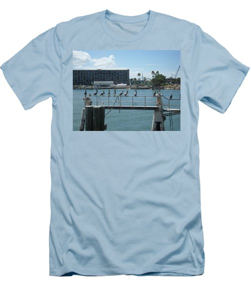Pelicans In A Row Men's T-Shirt (Slim Fit) by Val Oconnor