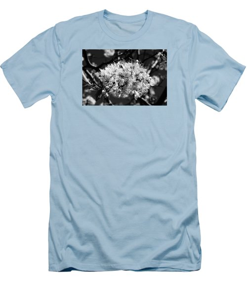 Plum Blossoms Men's T-Shirt (Athletic Fit)