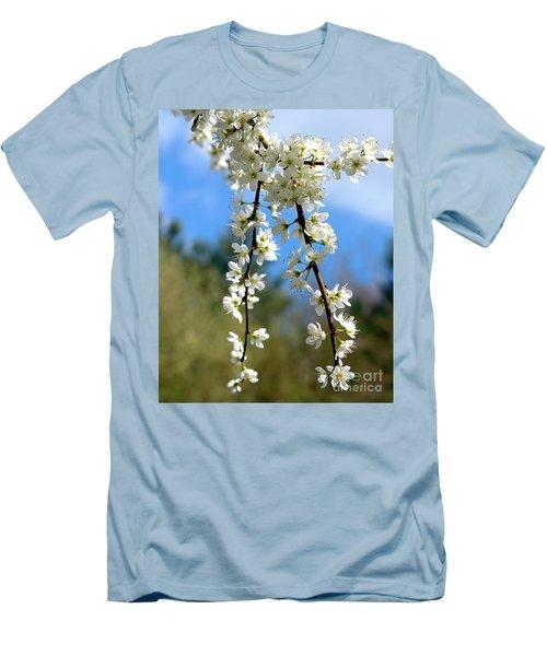 Plum Tree Blossoms Men's T-Shirt (Slim Fit)
