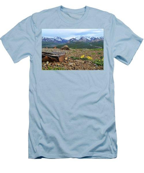 Polychrome Pass, Denali Men's T-Shirt (Slim Fit) by Zawhaus Photography
