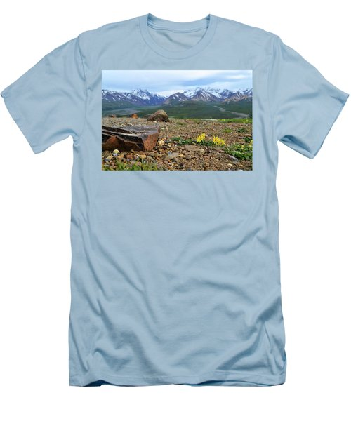 Polychrome Pass, Denali Men's T-Shirt (Athletic Fit)