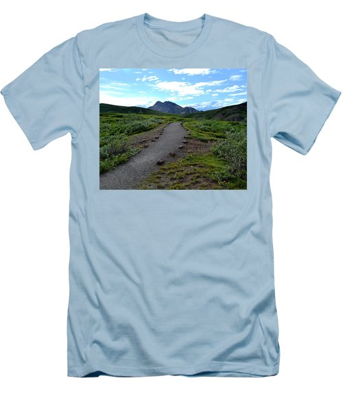 Polychrome Pass Trail, Denali Men's T-Shirt (Athletic Fit)