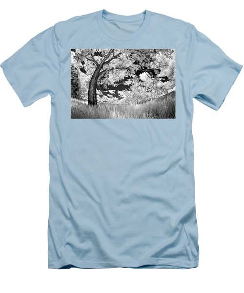 Poplar On The Edge Of A Field Men's T-Shirt (Slim Fit) by Dan Jurak