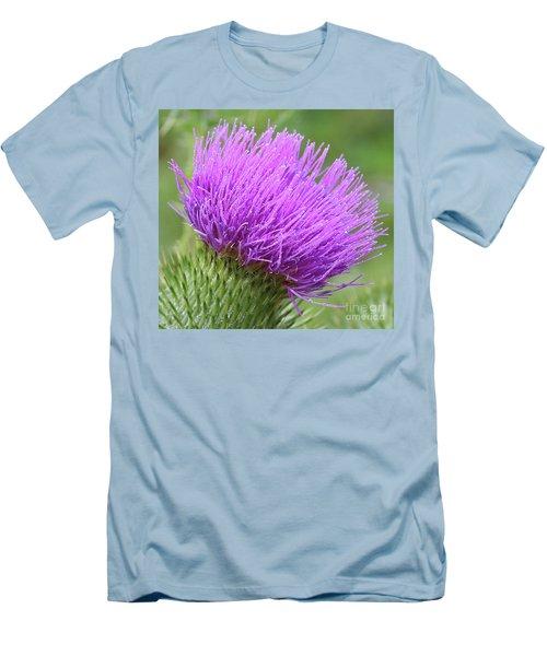 Purple Thistle Men's T-Shirt (Athletic Fit)