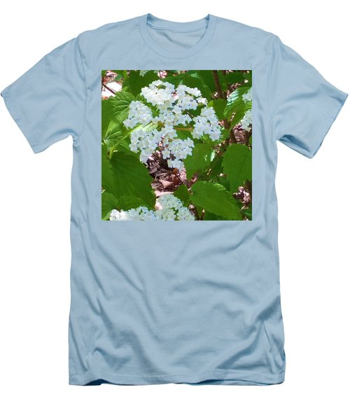 Queen Anne's Lace Men's T-Shirt (Slim Fit) by Kay Gilley