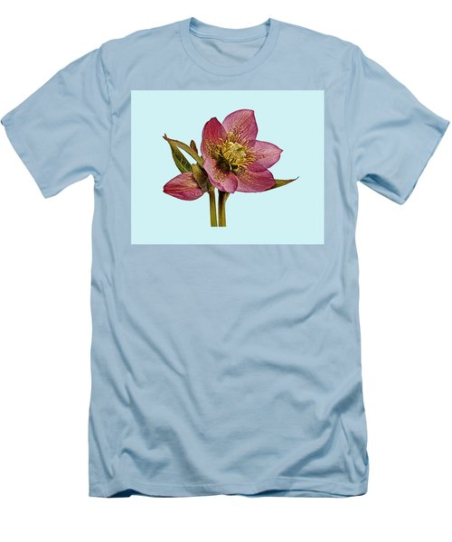 Red Hellebore Blue Background Men's T-Shirt (Slim Fit) by Paul Gulliver