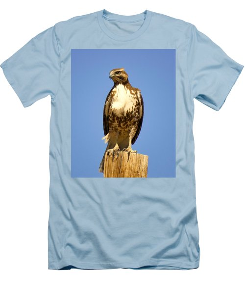 Red-tailed Hawk On Post Men's T-Shirt (Athletic Fit)
