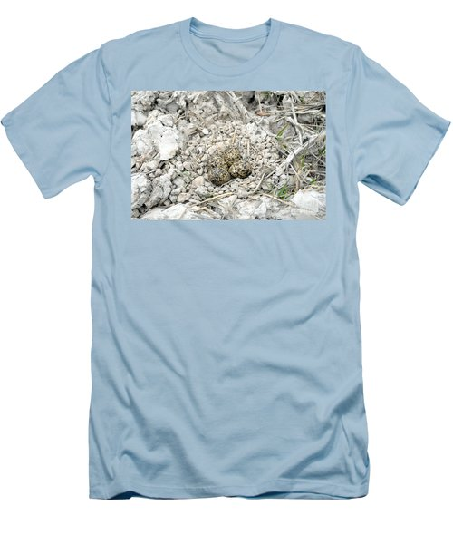 Red-wattled Lapwing Nest Men's T-Shirt (Athletic Fit)