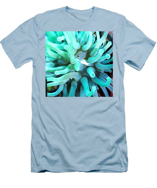 Sea Anemone And Squat Shrimp Men's T-Shirt (Athletic Fit)