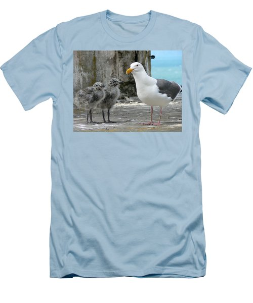 Seagull Family Men's T-Shirt (Slim Fit) by Laurel Powell