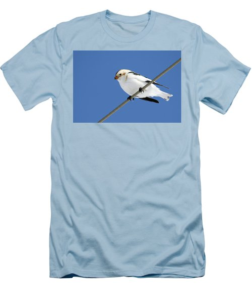 Snow Bunting Men's T-Shirt (Athletic Fit)