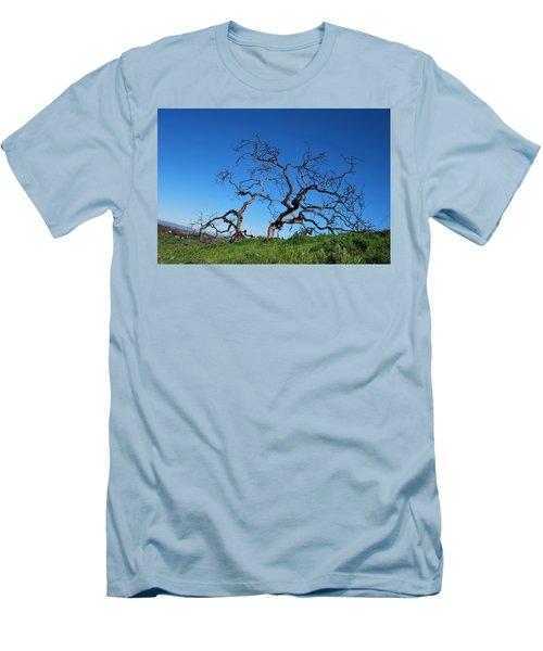 Split Single Tree On Hillside Men's T-Shirt (Athletic Fit)