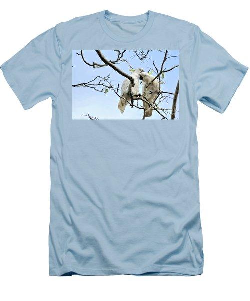 Sulphur Crested Cockatoos Men's T-Shirt (Athletic Fit)
