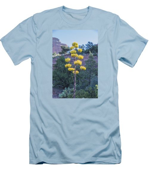 Sun Brightened Century Plant Men's T-Shirt (Athletic Fit)