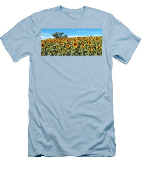 Sunflower Field One Men's T-Shirt (Slim Fit) by Barbara McDevitt