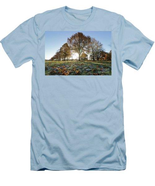 Sunrise Through Lime Trees Men's T-Shirt (Athletic Fit)