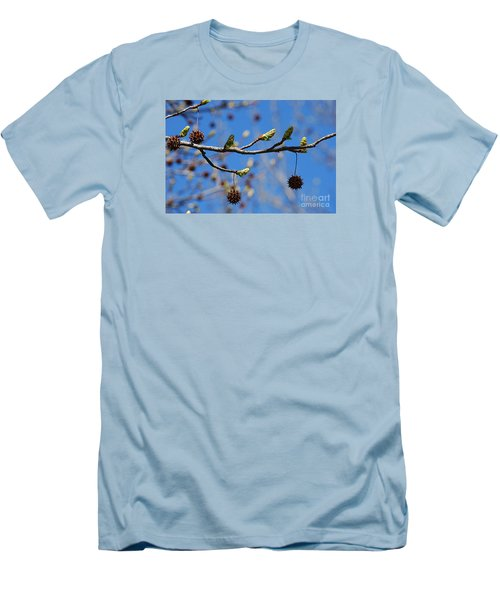 Sweet Gum Catkins 20120405_206a Men's T-Shirt (Athletic Fit)