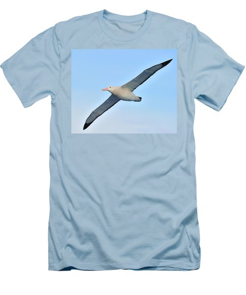 The Greatest Seabird Men's T-Shirt (Slim Fit) by Tony Beck