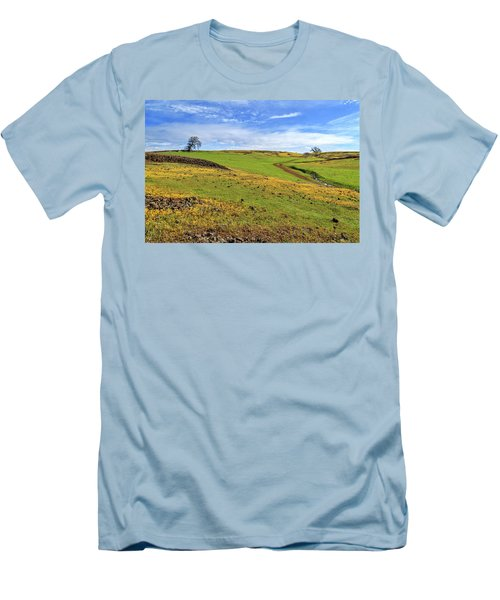 Volcanic Spring Men's T-Shirt (Slim Fit) by James Eddy