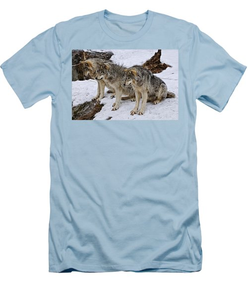 Men's T-Shirt (Slim Fit) featuring the photograph We Three Kings by Michael Cummings