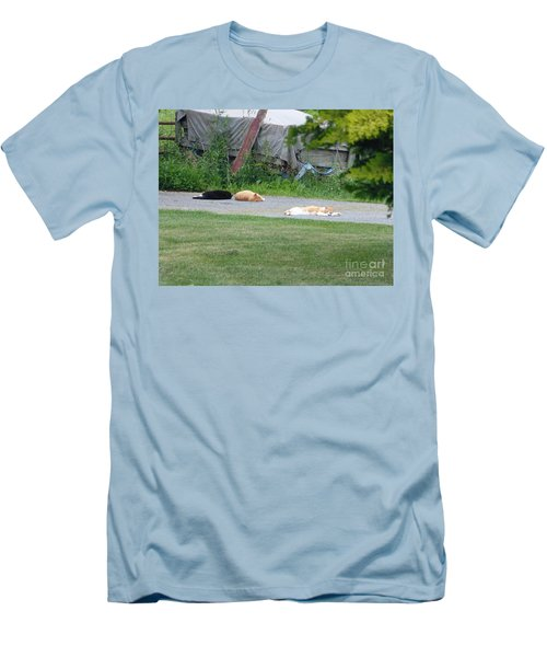 Men's T-Shirt (Slim Fit) featuring the photograph What A Day by Donald C Morgan