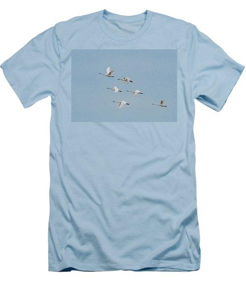 Whistling Swan In Flight Men's T-Shirt (Slim Fit)