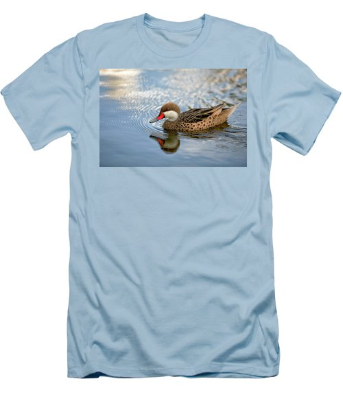 White-cheeked Pintail Men's T-Shirt (Athletic Fit)
