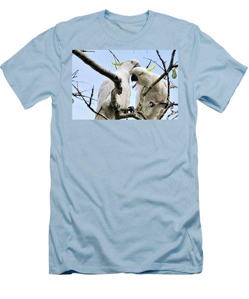 White Cockatoos Men's T-Shirt (Athletic Fit)