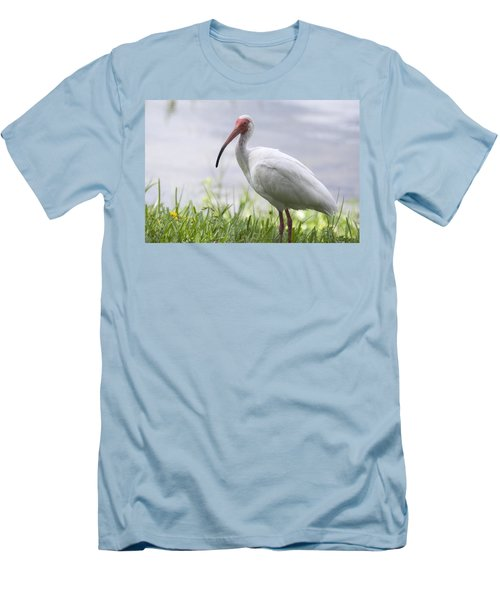 White Ibis  Men's T-Shirt (Slim Fit) by Saija  Lehtonen