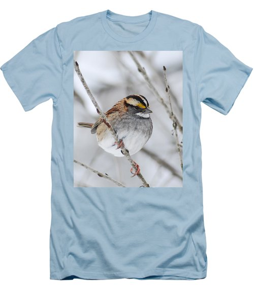 White Throated Sparrow Men's T-Shirt (Athletic Fit)