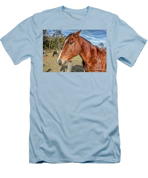 Men's T-Shirt (Slim Fit) featuring the photograph Wild Horse In Smoky Mountain National Park by Peter Ciro