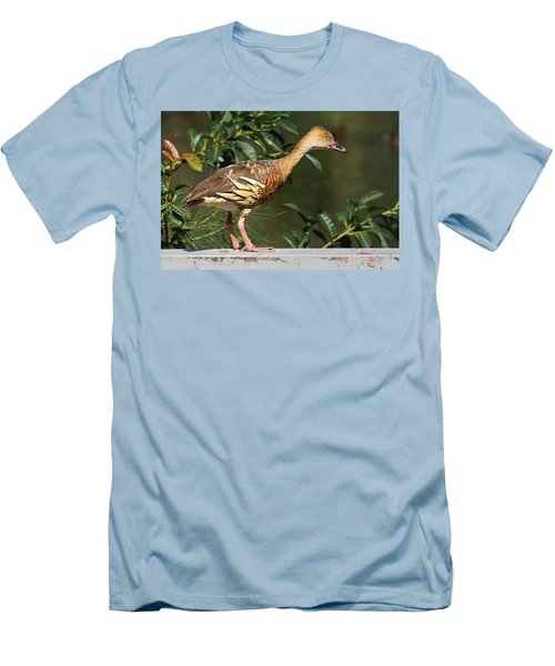 Young Duck Men's T-Shirt (Athletic Fit)