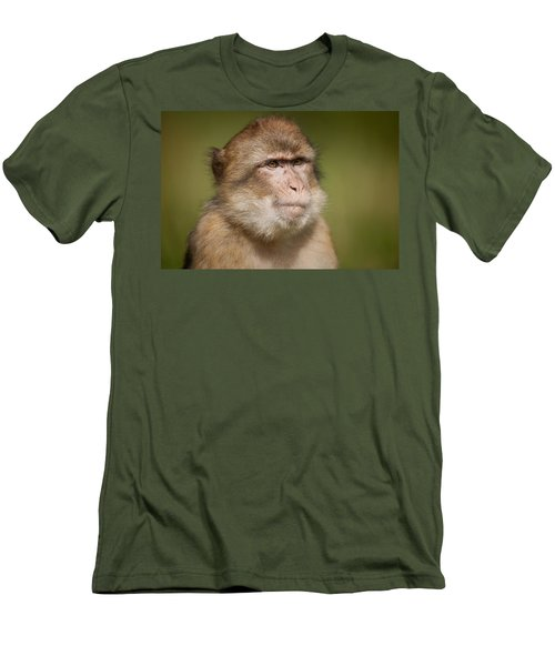 Barbary Macaque Men's T-Shirt (Athletic Fit)