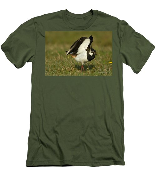 Northern Lapwing Men's T-Shirt (Athletic Fit)