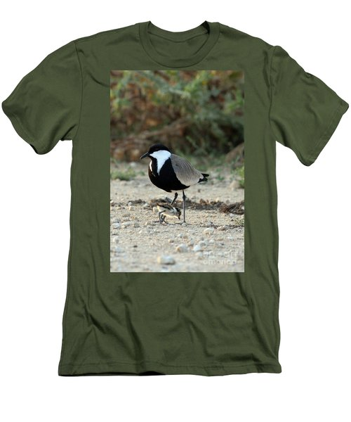 Spur-winged Plover And Chick Men's T-Shirt (Athletic Fit)