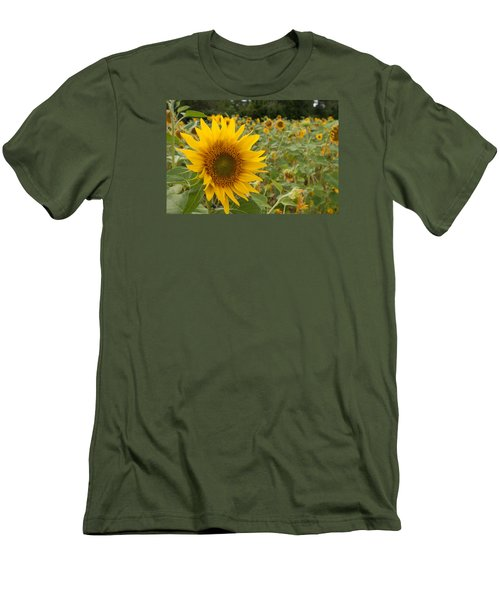 Sun Flower Fields Men's T-Shirt (Slim Fit) by Miguel Winterpacht