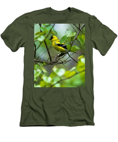 Men's T-Shirt (Slim Fit) featuring the photograph American Goldfinch by Robert L Jackson