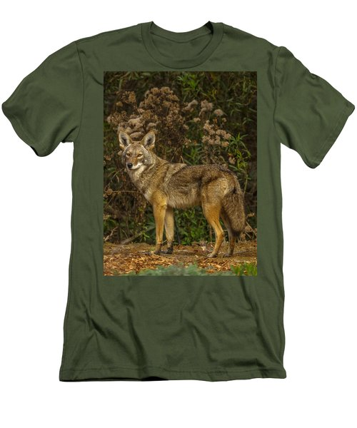 The Coyote Men's T-Shirt (Athletic Fit)