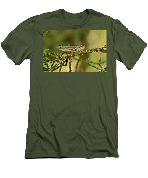 Men's T-Shirt (Slim Fit) featuring the photograph Grasshopper by Olga Hamilton