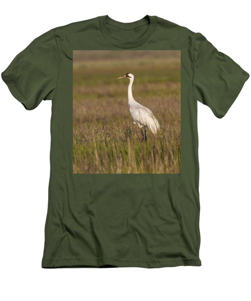 Whooping Crane Men's T-Shirt (Athletic Fit)
