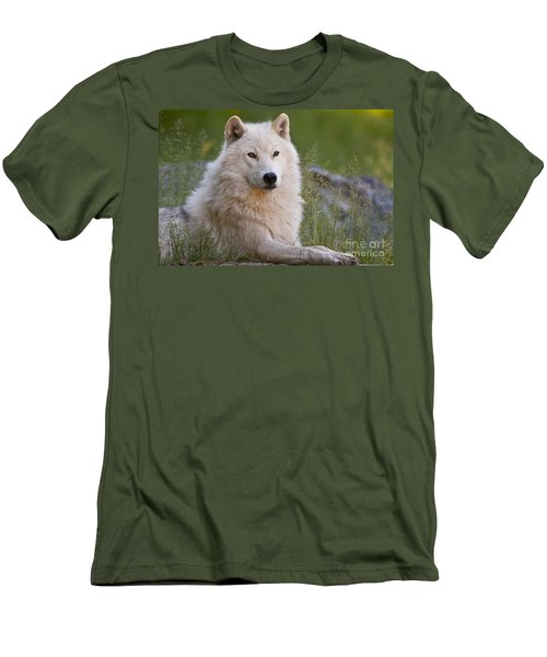 Arctic Wolf Men's T-Shirt (Slim Fit) by Wolves Only