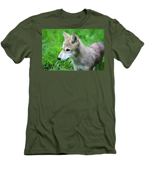 Gray Wolf Pup Men's T-Shirt (Athletic Fit)