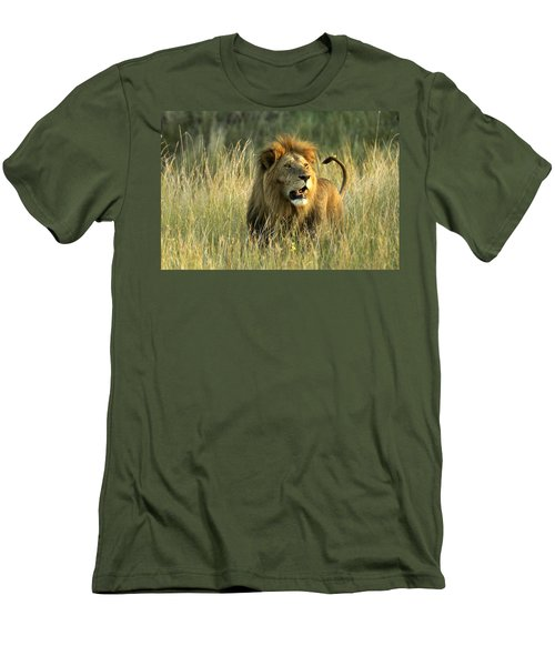 King Of The Savanna Men's T-Shirt (Athletic Fit)