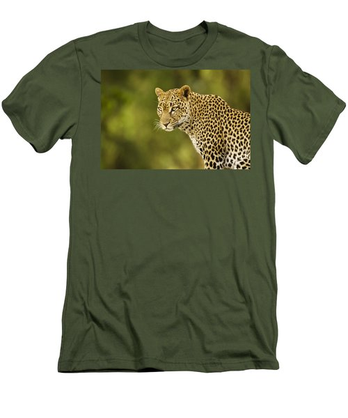 Lovely Leopard Men's T-Shirt (Athletic Fit)