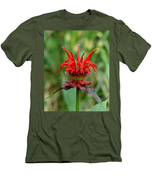 A Flowering Red Castle Beauty Men's T-Shirt (Athletic Fit)